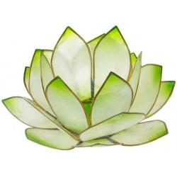 Photophore lotus - coloris vert lime