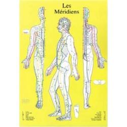 Planche Méridiens Chronobioenergetica - A4