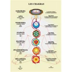 Planche des Chakras - A4