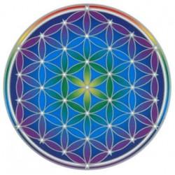 Autocollant attrape-soleil - Fleur de Vie - Flower of Life Mandala
