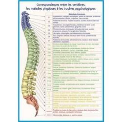 Planche Correspondances entre les vertèbres, les maladies physiques & les troubles psychologiques