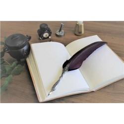 Coffret de Calligraphie 3 pointes Plume Violette