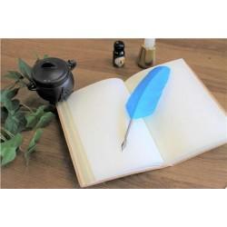 Coffret de Calligraphie Enfant 1 pointe Plume Bleue